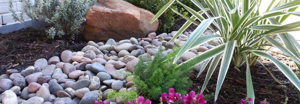 Dianella - HDG Landscape Design